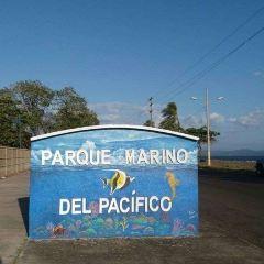 Parque Marino del Pacifico User Photo