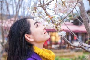 Foshan,Recommendations