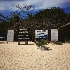 Apo Reef Natural Park User Photo