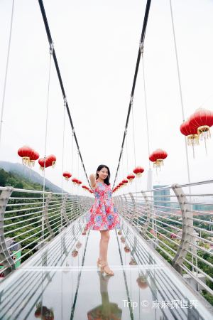 Heyuan,Recommendations