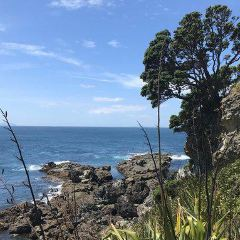 Hauraki Gulf User Photo
