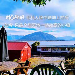 Moana User Photo