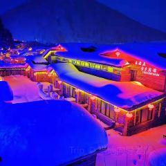 雪鄉夢幻家園用戶圖片