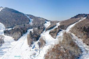 Slovenia,Recommendations