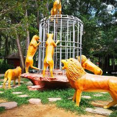 Ho Quoc Temple User Photo