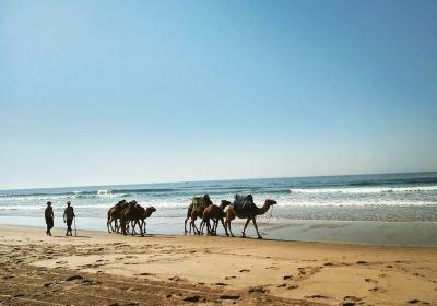 Tangier-Assilah