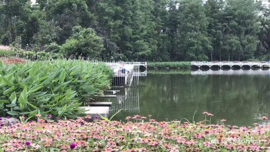 羅湖文化公園