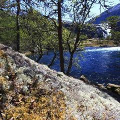 Husedalen Valley User Photo