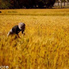 상목촌 여행 사진