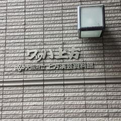 왓하 카미가타 여행 사진