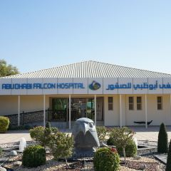 Abu Dhabi Falcon Hospital User Photo