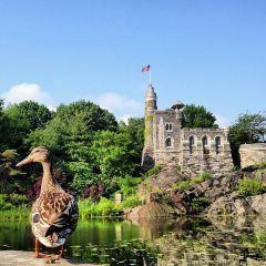 Belvedere Castle User Photo