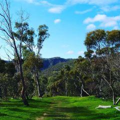 Black Hill Conservation Park User Photo
