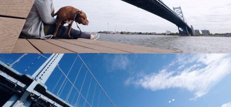 本傑明·佛蘭克林大橋1