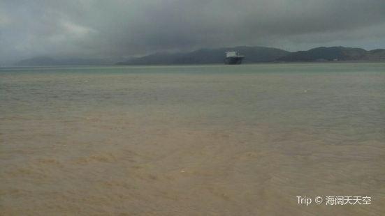 麥倉山海鷗島