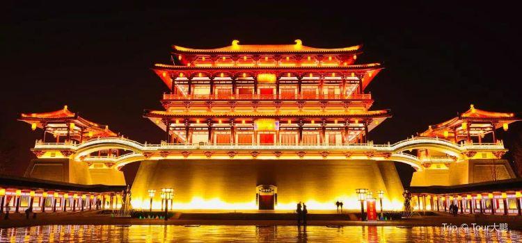Qujiang Night Tour3