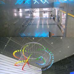 랴오닝 성 과학 기술 전시관 여행 사진