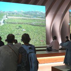 葡萄酒與交易博物館用戶圖片