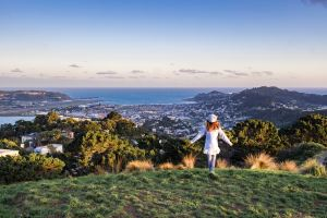 Wellington,Recommendations