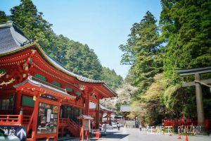 Nikko,Recommendations