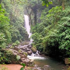 La Paz Waterfall and Peace Lodge Gardens User Photo