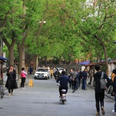Shuncheng Alley User Photo