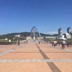 대전시립미술관 여행 사진
