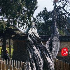 징닝 서족 자치현 여행 사진