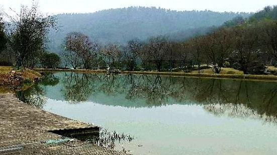 鳳凰湖生態植物園