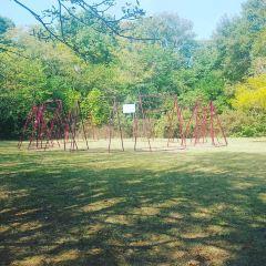 Primorski公園用戶圖片