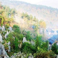 Sinan Stone Forest Tourist Area User Photo