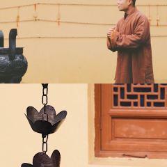 Futuo Temple User Photo