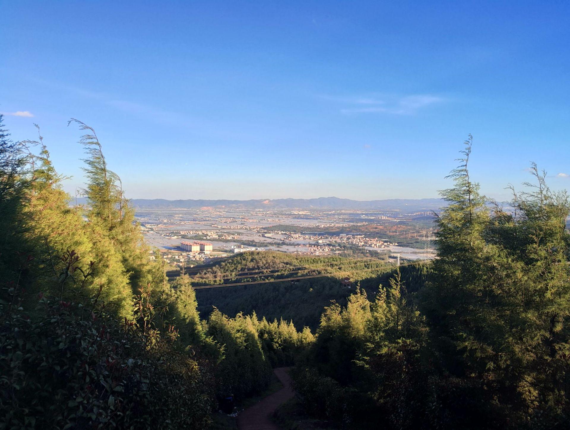 法界寺森林公園