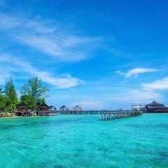 蘭卡央島用戶圖片