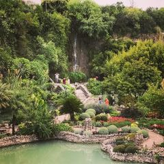Brackenridge Park User Photo