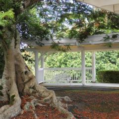 Nani Mau Gardens User Photo