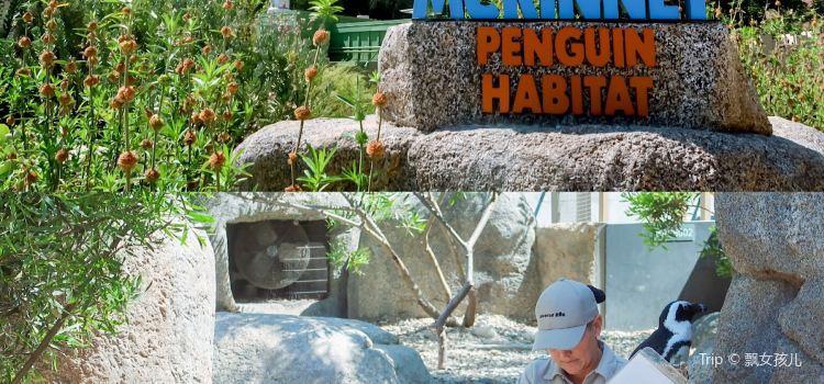 聖地亞哥動物園2
