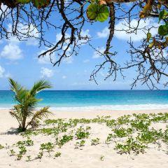 Grande Anse des Salines User Photo