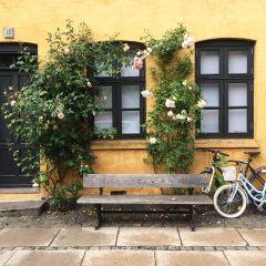 Nyboder User Photo