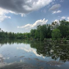 Mill Pond Park User Photo