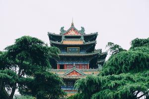南京,kol打卡熱點