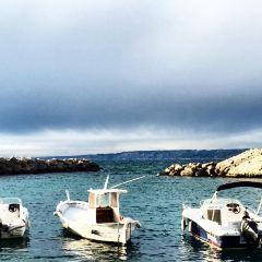 沃夫漁港用戶圖片