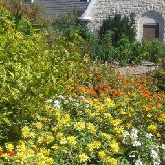 堪薩斯州立大學花園用戶圖片
