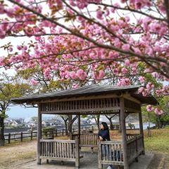 히토요시시 여행 사진