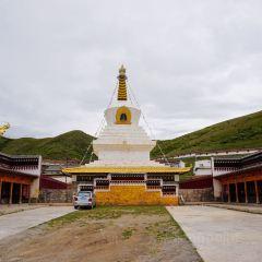 索克藏寺用戶圖片