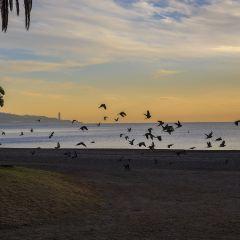 Potrero Beach User Photo