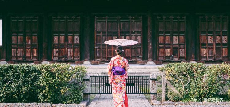 Kyoto Rental Kimono Okamoto3