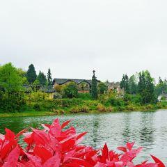 Chahai Scenic Area User Photo