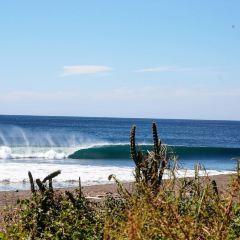 Nosara Beach (Playa Guiones) User Photo
