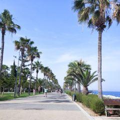 Limassol Marina User Photo